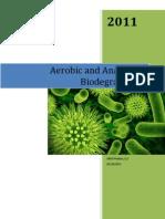 Aerobic and Anaerobic Biodegradation