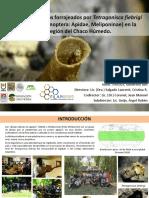 ponencia_en_filapi_chile