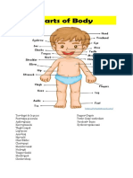 parts of the body.docx