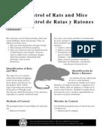 Rat Tips