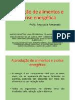 produção de alimentos e crise energética.pdf