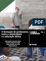 A formação de professores - entre a universidade e a educação básica.pdf