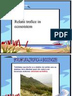 0_relatii_trofice_in_ecosistem