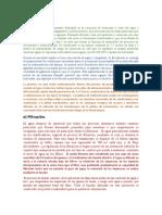 Expo Gestión2.docx
