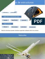 Tipos_de_estructuras.pdf