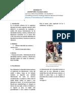 informe densidad relativa.docx