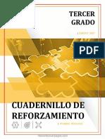 3° CUADERNILLO DE REFORZAMIENTO ALUMNO.pdf