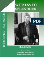 Witness to Splendour