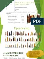 Instalaciones Agropecuarias Maiz
