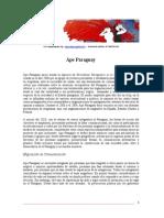 Documento de Identidad de Ápe Paraguay