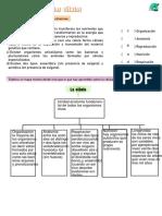 Estructuras especializadas