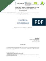 Banano CATIE.pdf
