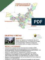 LECHE - VENTAQUEMADA resumen