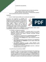 Grupo 3_Método Genético en producción de proteinas