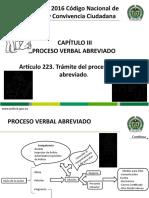 PROCESO VERBAL ABREVIADO