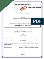 Djebar-Raouf.pdf