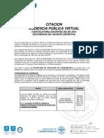 AUDIENCIA_VIRTUAL_CUNDINAMARCA_AMBIENTAL_AGOSTO_2020