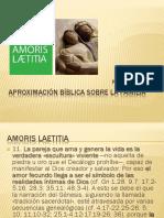 Amoris Laetitia Aprox Biblica Dkerber
