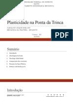 Plasticidade Na Ponta Da Trinca