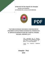 TESS AREQUIPQA.pdf