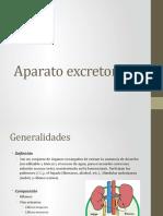 Aparato excretor.pptx