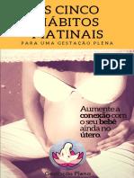 5 HÁBITOS MATINAIS --- E-book.pdf
