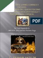 TRANSPLANTE DE LIMBO, CÓRNEA Y ESCLERA JAFV I