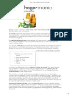 Hacer aceite esencial de pachuli