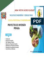 Gestíon de Proyectos de Inversión.pdf