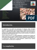Grupo N°2_Conservacion de pescado y mariscos por congelacion.