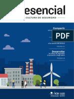 Icsi_esencial_ES_cultura-seguridad_2017