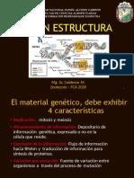 2 ADN Estructura-convertido