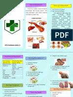 Leaflet kolesterol.docx