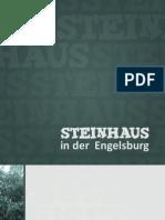 Steinhauskarte 2010