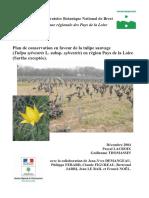 Plan_conservation_Tulipa_sylvestris_2004_CBNB