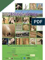 Programa Arundo 2011