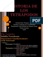 ZOOLOGÍA DE VERTEBRADOS Clase 5 Historia de los Tetrápodos