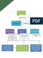 MAPA politica publica 2.0.docx