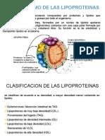 METABOLISMO DE LAS LIPOPROTEINAS