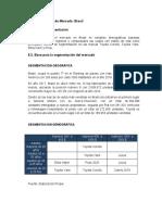 SEGMENTACION BRASIL - PAKISTAN.docx