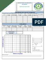 FORMATO LIMITES DE CONSISTENCIA.pdf