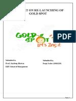 Report on Goldspot Marketing