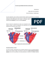 Integración vascular corregido