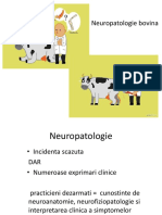 curs 11.pdf