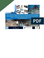 Estrategia-para-la-Aplicacion-del-Convenio-de-Minamata-sobre-el-Mercurio-y-sus-compuestos-en-la-Republica-Dominicana.pdf