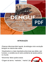 febre am DENGUE_Pedro_edit