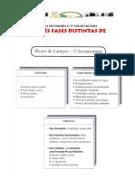 Alvaro Campos.pdf