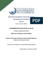 ENSAYO 2 DETERMINANTES SOCIALES DE LA SALUD