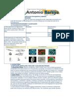 guia 1 clasificacion de los microorganismo