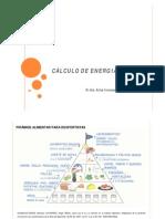 CÁLCULO DE ENERGIA